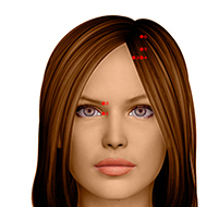 BL02 Bladder Meridian Acupuncture Point - Dermal / Skin level.