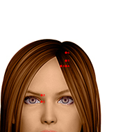 BL04 Bladder Meridian Acupuncture Point - Dermal / Skin level.