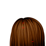 BL07 Bladder Meridian Acupuncture Point - Dermal / Skin level.