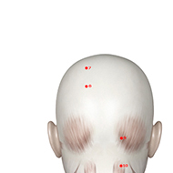 BL08 Bladder Meridian Acupuncture Point - Muscular / Muscle level.