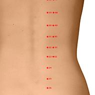 BL22 Bladder Meridian Acupuncture Point - Dermal / Skin level.