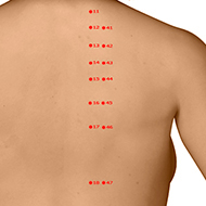 BL45 Bladder Meridian Acupuncture Point - Dermal / Skin level.