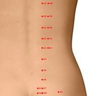 BL52 Bladder Meridian Acupuncture Point - Dermal / Skin level.