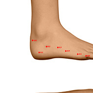 BL62 Bladder Meridian Acupuncture Point - Dermal / Skin level.