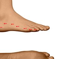 BL66 Bladder Meridian Acupuncture Point - Dermal / Skin level.