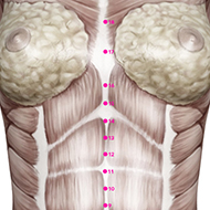 CV15 Conception Vessel Meridian Acupuncture Point - Muscular / Muscle level.