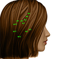 GB03 Gallbladder Meridian Acupuncture Point - Dermal / Skin level.