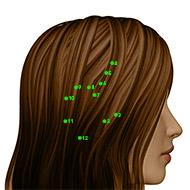 GB07 Gallbladder Meridian Acupuncture Point - Dermal / Skin level.