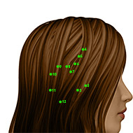 GB08 Gallbladder Meridian Acupuncture Point - Dermal / Skin level.