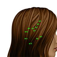 GB09 Gallbladder Meridian Acupuncture Point - Dermal / Skin level.
