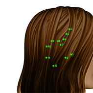 GB10 Gallbladder Meridian Acupuncture Point - Dermal / Skin level.