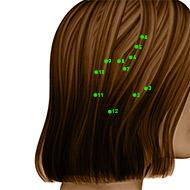 GB11 Gallbladder Meridian Acupuncture Point - Dermal / Skin level.