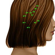 GB12 Gallbladder Meridian Acupuncture Point - Dermal / Skin level.