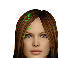 GB14 Gallbladder Meridian Acupuncture Point - Dermal / Skin level.