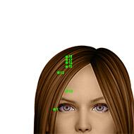 GB15 Gallbladder Meridian Acupuncture Point - Dermal / Skin level.