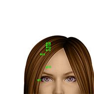 GB16 Gallbladder Meridian Acupuncture Point - Dermal / Skin level.