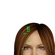 GB18 Gallbladder Meridian Acupuncture Point - Dermal / Skin level.