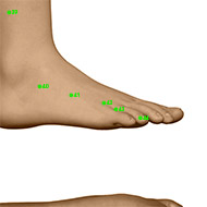 GB42 Gallbladder Meridian Acupuncture Point - Dermal / Skin level.
