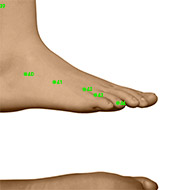 GB43 Gallbladder Meridian Acupuncture Point - Dermal / Skin level.