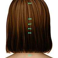 GV16 Governing Vessel Meridian Acupuncture Point - Dermal / Skin level.