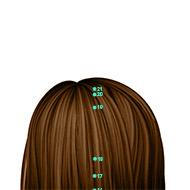 GV20 Governing Vessel Meridian Acupuncture Point - Dermal / Skin level.