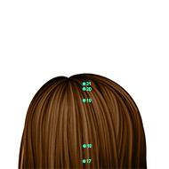 GV21 Governing Vessel Meridian Acupuncture Point - Dermal / Skin level.