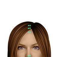 GV23 Governing Vessel Meridian Acupuncture Point - Dermal / Skin level.