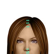 GV24 Governing Vessel Meridian Acupuncture Point - Dermal / Skin level.