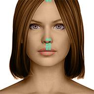 GV27 Governing Vessel Meridian Acupuncture Point - Dermal / Skin level.