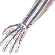 HT06 Heart Meridian Acupuncture Point - Skeletal / Skeleton level.