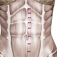 KD17 Kidney Meridian Acupuncture Point - Muscular / Muscle level.