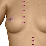 KD22 Kidney Meridian Acupuncture Point - Dermal / Skin level.