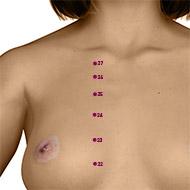 KD25 Kidney Meridian Acupuncture Point - Dermal / Skin level.