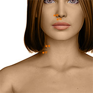 LI18 Large Intestine Meridian Acupuncture Point - Dermal / Skin level.