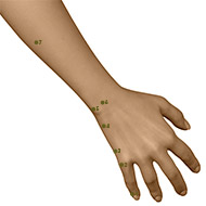 SI06 Small Intestine Meridian Acupuncture Point - Dermal / Skin level.