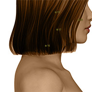 SI16 Small Intestine Meridian Acupuncture Point - Dermal / Skin level.