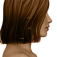 SI17 Small Intestine Meridian Acupuncture Point - Dermal / Skin level.