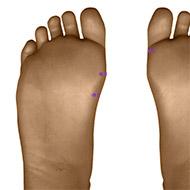 SP04 Spleen Meridian Acupuncture Point - Dermal / Skin level.