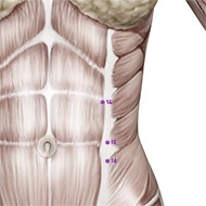 SP16 Spleen Meridian Acupuncture Point - Muscular / Muscle level.