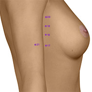 SP17 Spleen Meridian Acupuncture Point - Dermal / Skin level.