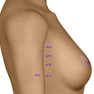 SP20 Spleen Meridian Acupuncture Point - Dermal / Skin level.