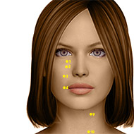 ST02 Stomach Meridian Acupuncture Point - Dermal / Skin level.
