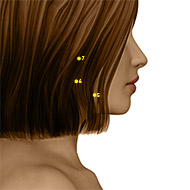 ST05 Stomach Meridian Acupuncture Point - Dermal / Skin level.