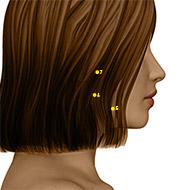 ST06 Stomach Meridian Acupuncture Point - Dermal / Skin level.