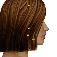 ST07 Stomach Meridian Acupuncture Point - Dermal / Skin level.