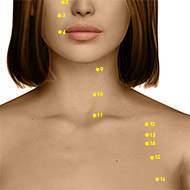 ST10 - Stomach Meridian 10 Acupuncture Point | AcuWiki Democratic