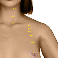ST13 Stomach Meridian Acupuncture Point - Dermal / Skin level.