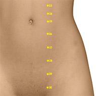 ST27 Stomach Meridian Acupuncture Point - Dermal / Skin level.