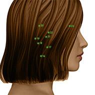 TB17 Triple Burner or Sanjiao Meridian Acupuncture Point - Dermal / Skin level.