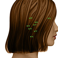 TB18 Triple Burner or Sanjiao Meridian Acupuncture Point - Dermal / Skin level.